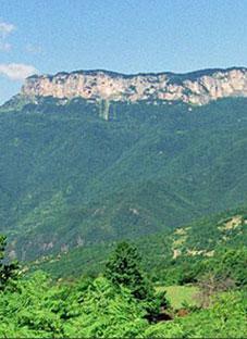 ხვამლის მთაზე არქეოლოგიურ ფენას ბულდოზერით გადაუარეს