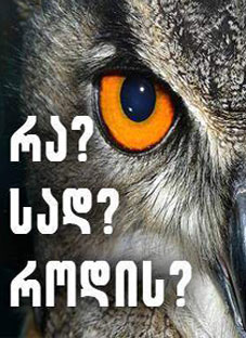 1qartveli-moazrovneebi