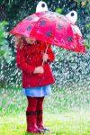 იცით წვიმის 64 სახელი ქართულად?