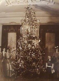 ასე გამოიყურებოდა პირველი ნაძვის ხე საქართველოში