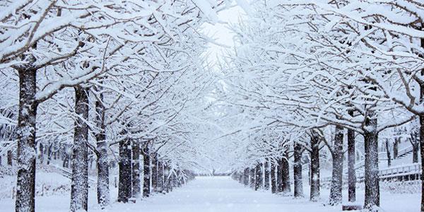 ლექსები ზამთარზე